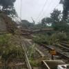Maltempo, tromba d'aria a Genova: strade e ferrovie in tilt. Roma, albero su scuolabus: tre feriti tra cui una bimba