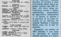 31 Agosto 1976 – forte grandinata a Trino Vercellese