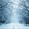 L'inverno dalle prossime ore ci fara' visita!