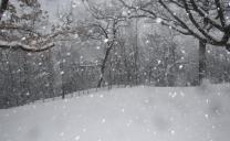 Riguardo le nevicate in Emilia Romagna