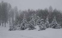 Ecco il video della Tempesta di neve in Gran Bretagna