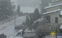 Forte Nevicata in provincia di Piacenza, FOTO