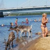 Ondata di caldo in Scandinavia.. Lapponia senza neve: Natale in.. Bianco?!?
