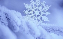 Un po' di inverno sull'Italia durante la settimana prossima.