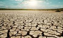 Nella Repubblica Ceca si sta verificando la più grave siccità da 500 anni.