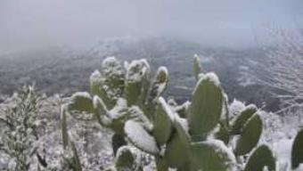 Abbondanti nevicate in arrivo al centro sud