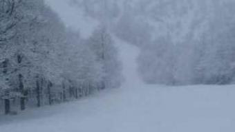 Aggiornamento Live nevicata al Mottarone