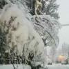 Neve e Gelo tra Russia Europea e Finlandia