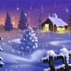 Manuale d'uso per un inverno perfetto (o quasi…)