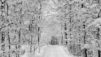 In arrivo ondata di gelo sull'Italia, 10 consigli per difendersi dal freddo