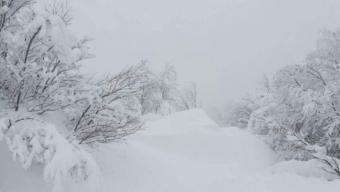 """Allerta Meteo Campania: """"anomalia termica negativa"""", crollo termico e nevicate in arrivo"""