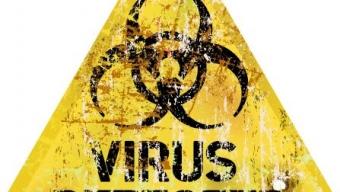 Torna anche il Virus dell'Influenza Suina in Italia