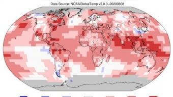 Luglio 2020 è stato il secondo mese di luglio più caldo del mondo🌡️