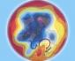 08 novembre 2020…dinamiche meteo di matrice continentale…