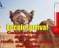 In arrivo la prima ondata di calore dal nord Africa sull'Italia 🌡️