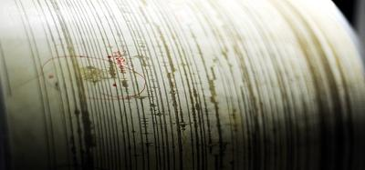 sismografo_big_fg