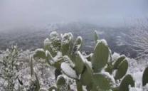 Un weekend da battere i denti, tanta neve in arrivo sul Messinese