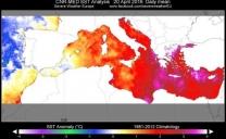 Acque del Mediterraneo molto calde