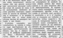 26 Giugno 1976, Ondata di Caldo in Germania
