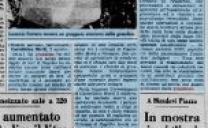 21 Giugno 1976, è caduta grandine solo sulla mia vigna, sono rovinato