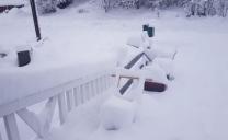 In anticipo, BOLOGNA almeno 35CM DI NEVE fra 3 giorni!!!!!!!!! Nevicata storica in vista