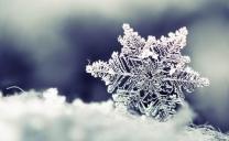 """Le News della Sera: Freddo intenso per un paio di giorni, poi arriverà la """"nevicata"""" da addolcimento"""