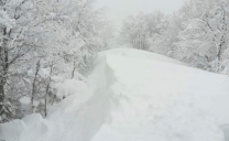 """Allerta Meteo Lombardia, """"Burian"""": rischio neve fino alle 12 di domani"""
