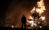Le foreste in Grecia e a Cipro stanno bruciando!