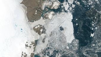 """Allarme Clima: la NASA conferma lo scioglimento dei grandi ghiacciai """"Zachariae Isstrom"""" e """"Nioghalvfjerdsfjorden"""" in Groenlandia!"""