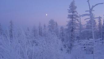 SOS inverno: l'anticiclone russo-siberiano si è perso…