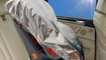 Auto al sole: trappola mortale per bambini e animali domestici