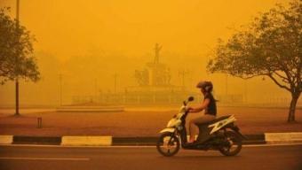 Clima, Organizzazione meteorologica mondiale: nel 2015 e nel 2016 livelli record di anidride carbonica