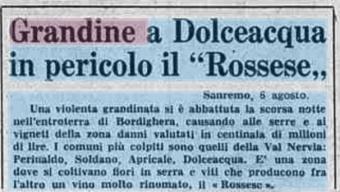 6 Agosto 1976, grandine a Dolce Acqua, in pericolo il Rossese