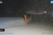 Arrivata la neve in provincia di Isernia