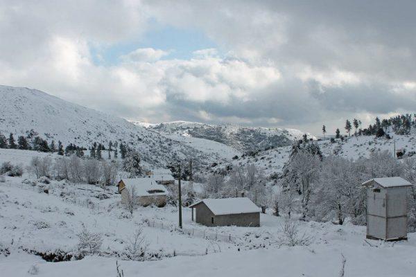 Quando l inverno era Normale e cominciava a Novembre 3fa08db99d3